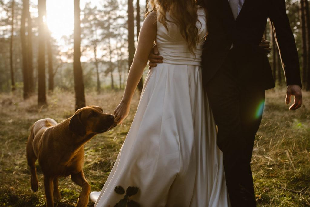 Sesja ślubna 8